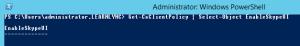 enableSkypeUINulld
